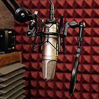 Rode NT-2A Studio Microphone